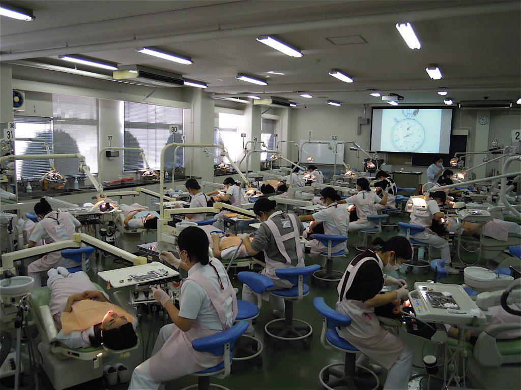 神奈川歯科大学短期大学部